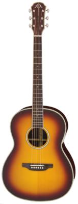 ARIA-MSG02 Meister serie western gitaar, sunburst