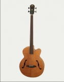 ARIA-FEBFLF/N Elecord accoustic bass with pick-up & F-holes