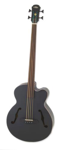 ARIA-FEBFLF/STBK Aria Acoustic/electric bass gitaar
