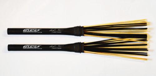 FAC-SBCC FACUS Hybrid signature brushes Claudio Canzano