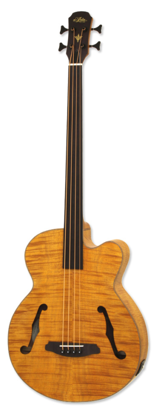 ARIA-FEBF2-FL-STBR Acoustic/electric hollow body fretless bass guitar