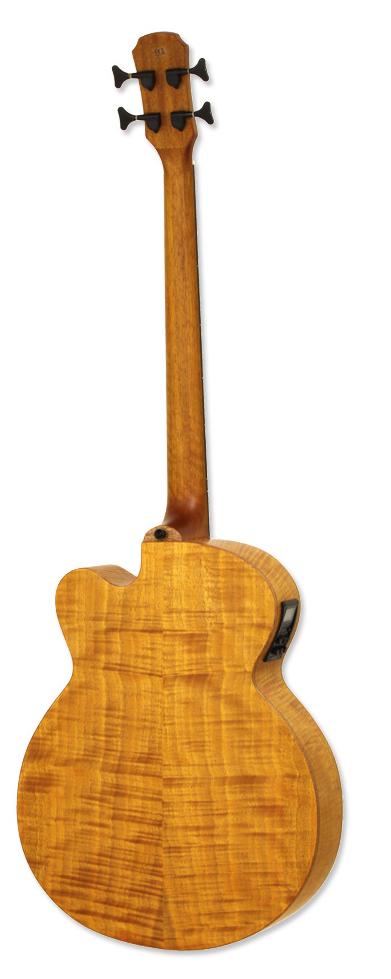 ARIA-FEBF2-FL-STBR Acoustic/electric hollow body fretless bass guitar